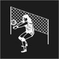 Volley Ball Logo